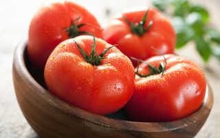 Самый популярный сорт томата: выращивание и уход