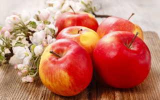 Польза и вред яблок
